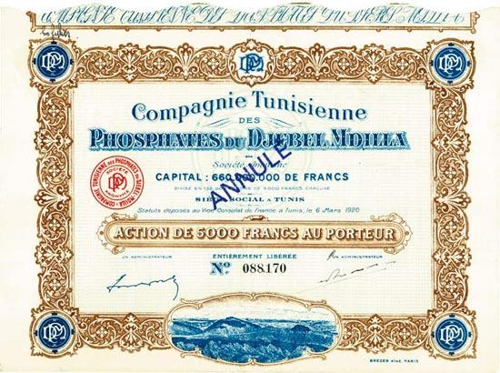 Compagnie Tunisienne des Phosphates du Djebel Mdilla Société Anonyme