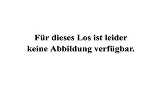 In Schacht und Hütte. Die Industrie des Ruhrkohlen-Bezirks und benachbarter Gebiete