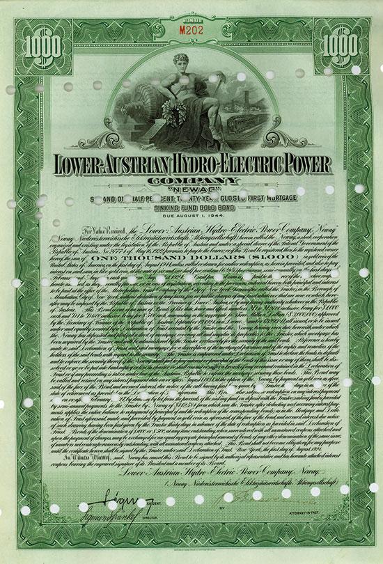 Lower-Austrian Hydro-Electric Power Company