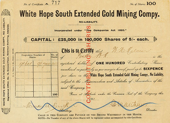 White Hope South Extended Gold Mining Compy.