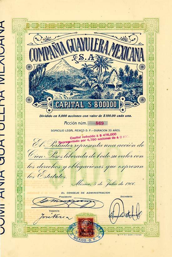 Compañia Guayulera Mexicana S. A.